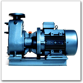 Content Images/Brand/Rusch Pumpen/Centrifugal Self Priming Pump